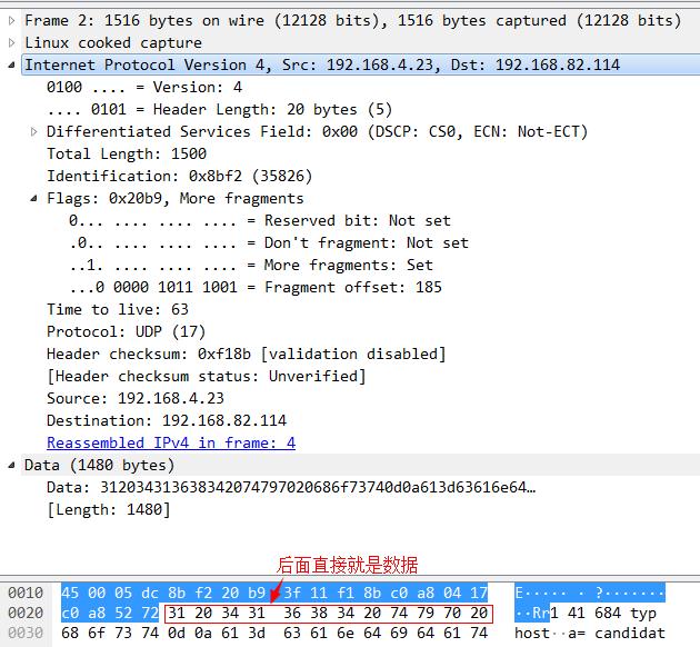 UDP后面的分片.png